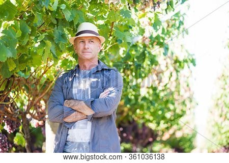 Successful Winemaker At Their Vineyard. Handsome Senior Man In Straw Hat And Shirt Posing In Garden.
