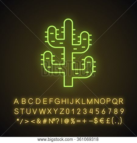 Saguaro Cactus Neon Light Icon. Tree Like Cactus. Desert Plant. Spiny Succulent. Glowing Sign With A