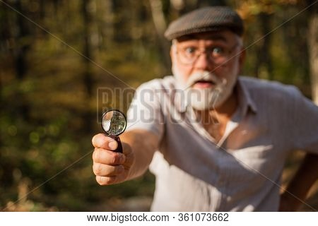Zoom. Curiosity Concept. Picky Detective In Forest. Explore Nature. Pensioner With Magnifier Explori