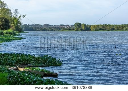 View Of Lake With Trees, Aquatic Vegetation And Wooden Fishing Boats On The Banks
