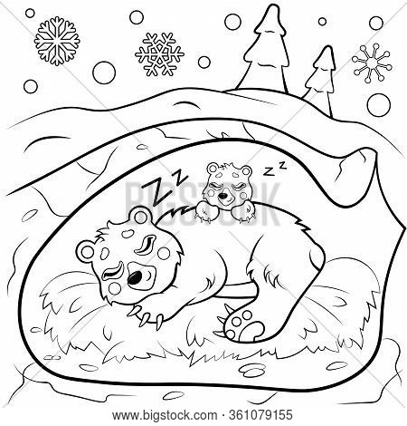 Cute Cartoon Sleeping Bears In Den In Winter Vector Coloring Page. Bear Mom With Her Cub . Coloring