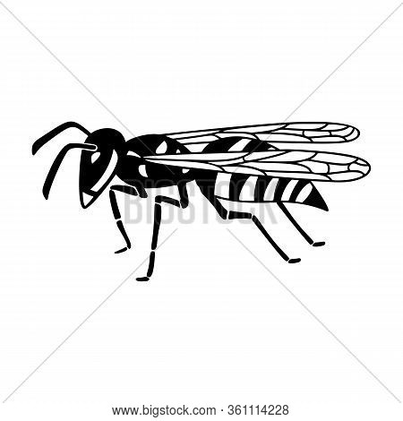 Insect Wasp, Black Wasp Silhouette. A Stinging Insect, An Insect Pest. Flat Design. Vector