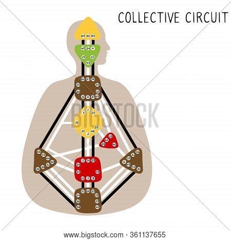 Collective Circuitry. Human Design Bodygraph. Hand Drawn Bodygraph Chart Design. Vector Illustration