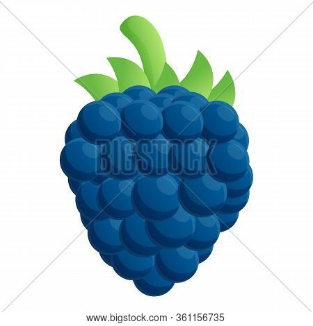 Raw Blackberry Icon. Cartoon Of Raw Blackberry Vector Icon For Web Design Isolated On White Backgrou