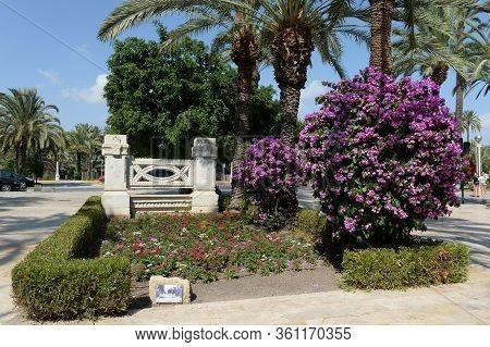 Elche, Spain - September 20, 2018: Park Paseo De La Ectacion In The City Of Elche. Spain