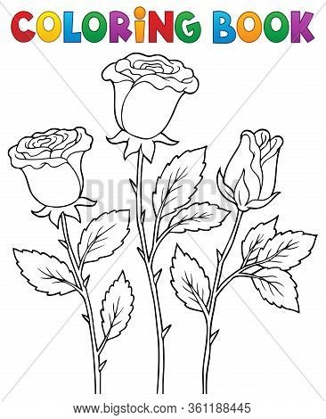 Coloring Book Rose Flower Image 1 - Eps10 Vector Picture Illustration.