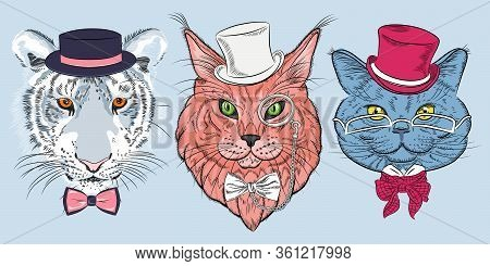 Set Of Hipster Cats In Hats And Bow Ties. British Cat In Eyeglasses, Maine Coon Cat In Pince-nez Eye