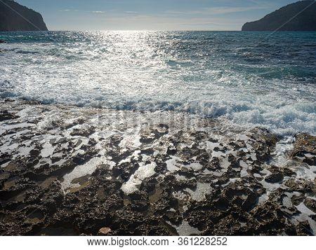 Green Brown Sea Algae On Rocky Sea Bank. Mossy Breakwater In Stormy Water Of Sea. Beach With Algae,