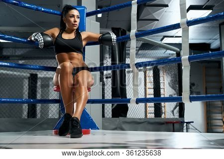 From Below View Of Serious Tattooed Female Kickboxer Wearing Trendy Sports Outfit And Boxing Gloves