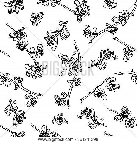 Delicate Twigs With Small Flowers And Berries. Vintage Seamless Pattern With Twig. Background For Ec