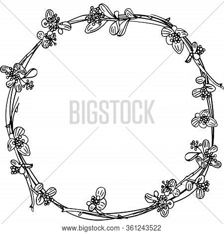 Frame Of Twigs Isolated. Delicate Twigs With Small Flowers And Berries. Background For Eco Forest Au