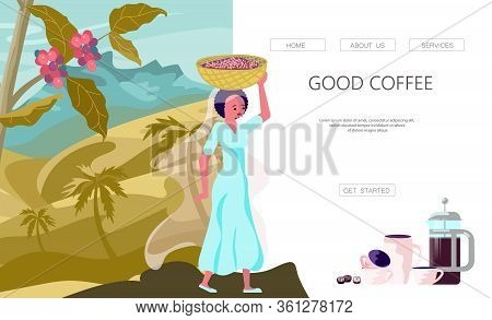 Landing Web Page Template With Female Coffee Farmer Hold Basket With Mature Coffee Beans. Panoramic
