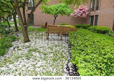landscaping by brick building