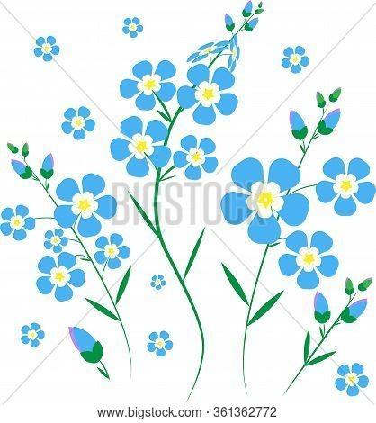 Turquoise Blue Flowers, Forget-me-nots , Floral Spring, Postcard, Floral Design, Blue