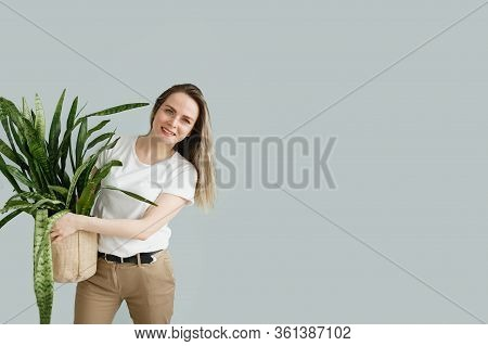 Beautiful Young Woman Holding Potted Plant Sansevieria And Smiling At Camera Isolated On Grey