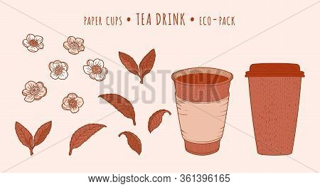 Tea Plant And Paper Cups. Camellia Leaves And Flowers And Hot Drink In The Hand-drawn Technique