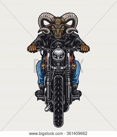 Animal Moto Rider Vintage Colorful Concept With Cruel Ram Head Biker Riding Motorcycle Isolated Vect