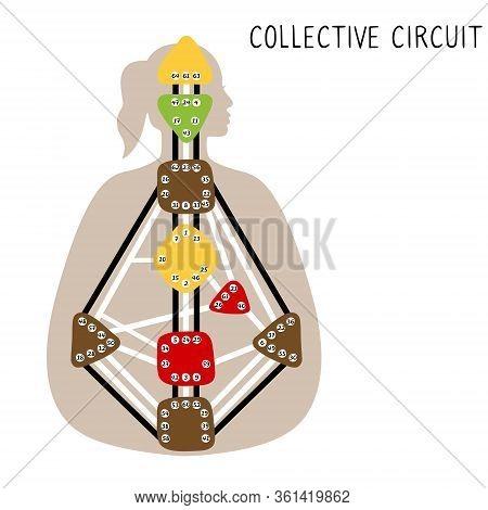 Collective Circuitry. Human Design Bodygraph. Hand Drawn Bodygraph Chart Design. Vector