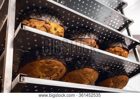 Italian Traditional Chirstmas Panettone Placed In A Metal Shelf Upside Down Just After Cooking, To C