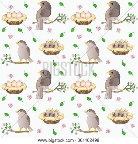 Birds On Branches - Spring Seamless Vector Pattern. Seamless Pattern With Birds, Nests With Eggs And