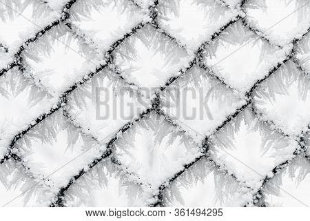 Frozen Chain Link Fence, Frozen In Time