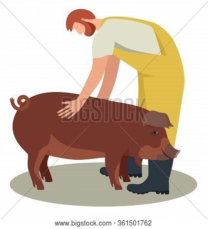 Farmer With Red Wattle Hog  Breeds Of Domestic Pigs Flat Vector Illustration Cattle Breeding And Sto