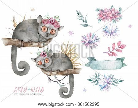 Baby Mouse Lemur. Hand Drawn Cute Watercolor Cartoon Mouse Lemur On Tree With Jungle Leaves On White