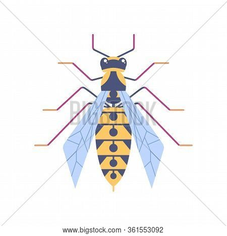 Wasp Flat Icon. Wildlife Striped Insect In Flat Style. Hornet Symbol For Logo And Web Design, Brandi