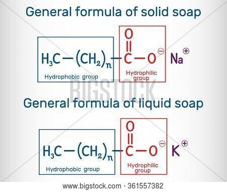 General Formula Of Solid And Liquid Soap Molecule. Rcoona, Rcook. Structural Chemical Formula. Vecto