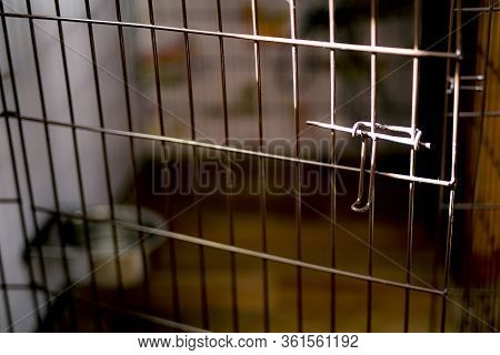 Open Cell Door Lit By Sun. Empty Abandoned Pet Wire Crate Or Animal Cage. Runaway