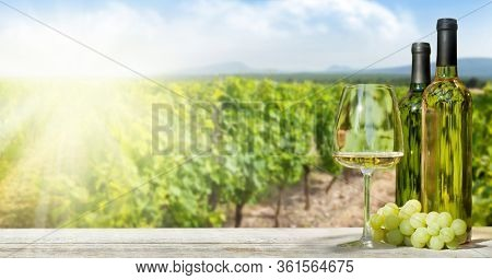 Colorful grapes in basket, white wine bottles and glass in front of landscape of vineyard. French countryside valley