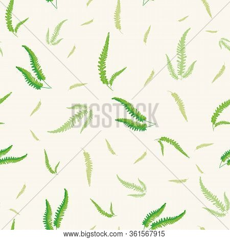 Fern Leaves Vector Seamless Pattern Background. Forest Plant Frond White Green Backdrop. Hand Drawn