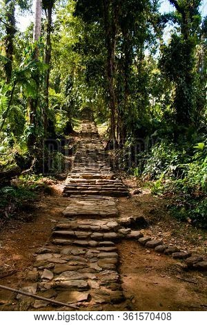 Long Stairway To Reach The Lost City (indigenous Name Teyuna), Sierra Nevada De Santa Marta, Magdale