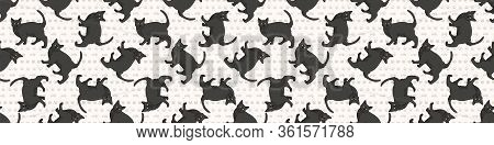 Cute Cartoon Bombay Cat Seamless Border Pattern. Pedigree Kitty Breed Domestic Kitty Background. Cat