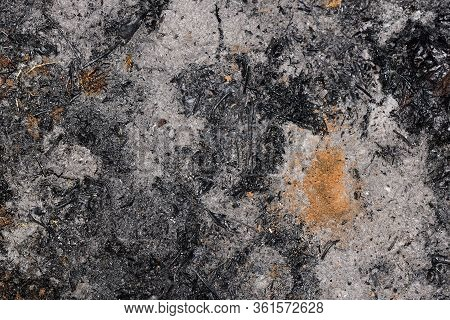 Ashy Surface. Texture Of Burnt Grass. Overal View.