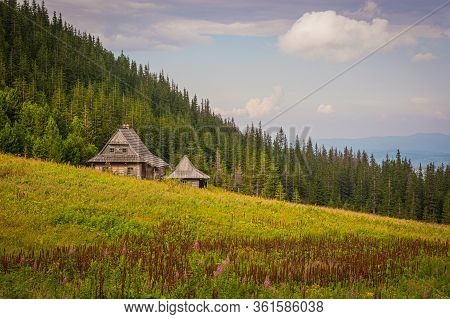 Mountain Wooden Rural Cottage On A Meadow In The Mountains, A Meadow With Flowers, In The Background