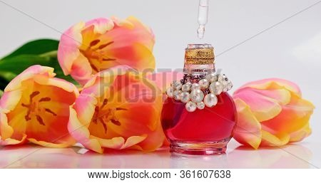 Perfumery. Drops Falling From Cosmetic Pipette To Glass Bottle With Perfume Oil. Skin And Body Care.