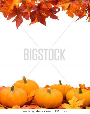 Fall Harvest Frame