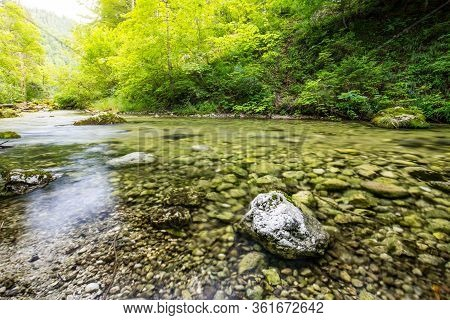 Amazing Forest Nature With Creek Stream With Rocks In Wonderful Spring Summer Sunlight. Nature Wonde
