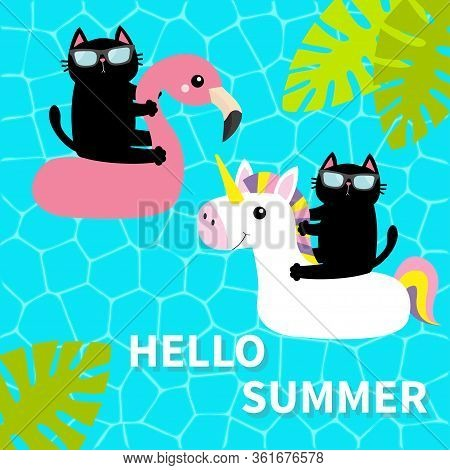 Black Cat Floating On White Flamingo Unicorn Pool Float Water Circle. Swimming Pool Water. Hello Sum