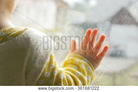 A Little Baby Looking Trough The Window,