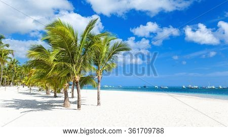Beach On A Tropical Island With White Sand And Coconut Trees. Yachts And Boats Off The Coast Of The