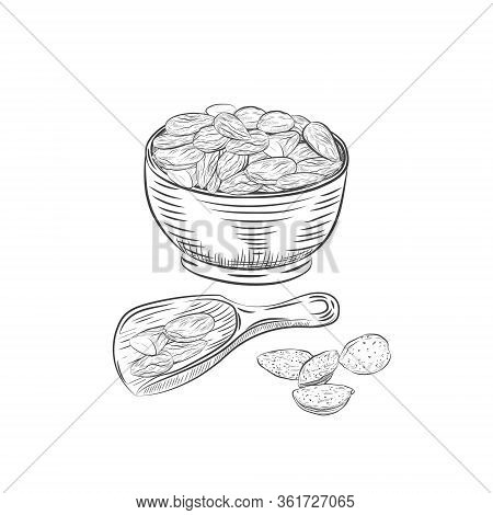 Almonds In Bowl And Scoop Vector Sketch. Almond Kernels And Nutshells Isolated On White Background.