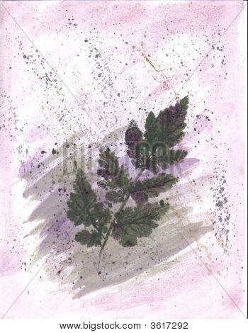 Art Licorice Leaf Print On Pink