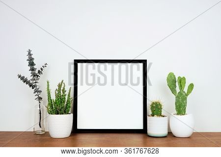 Mock Up Black Square Frame With Potted Plants And Branch Decor. Wooden Shelf Against A White Wall. C