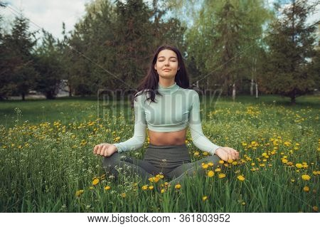 Woman Meditating In Lotus Pose On Green Dandelion Meadow Against Forest. Practicing Of Yoga At Summe