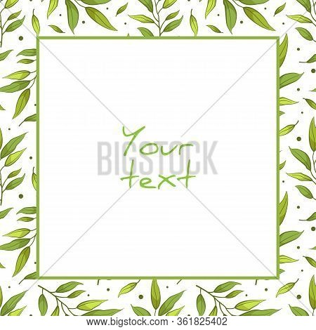 Vector Foliate Frame; Square Frame With Green Tea Branches For Greeting Cards, Invitations, Wedding
