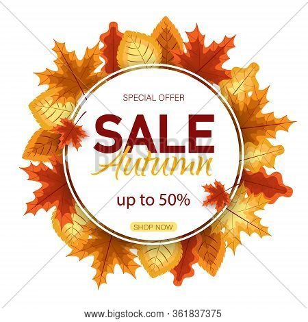 Banners with fall autumn leaves. Autumn season discount offers with red and orange realistic foliage. Colorful leaf design vector seasonal autumn sale abstract tag templates. Sales banner with autumn leaves vector banner