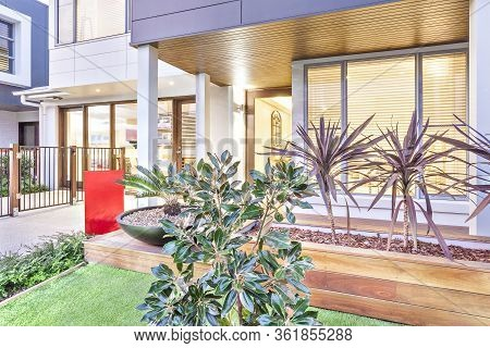 Green Fancy Plants In Front Of A Luxury House And Tall Buildings Beside The Garden, These Trees Are