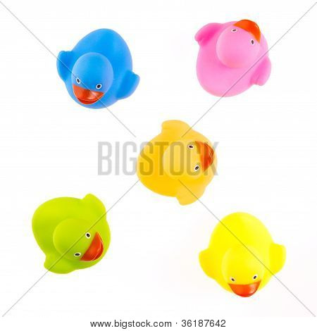Rubber Ducks Isolated